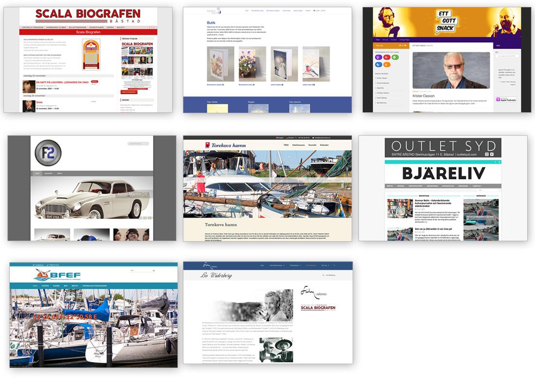 Webbsidor av Fredrik Strandberg