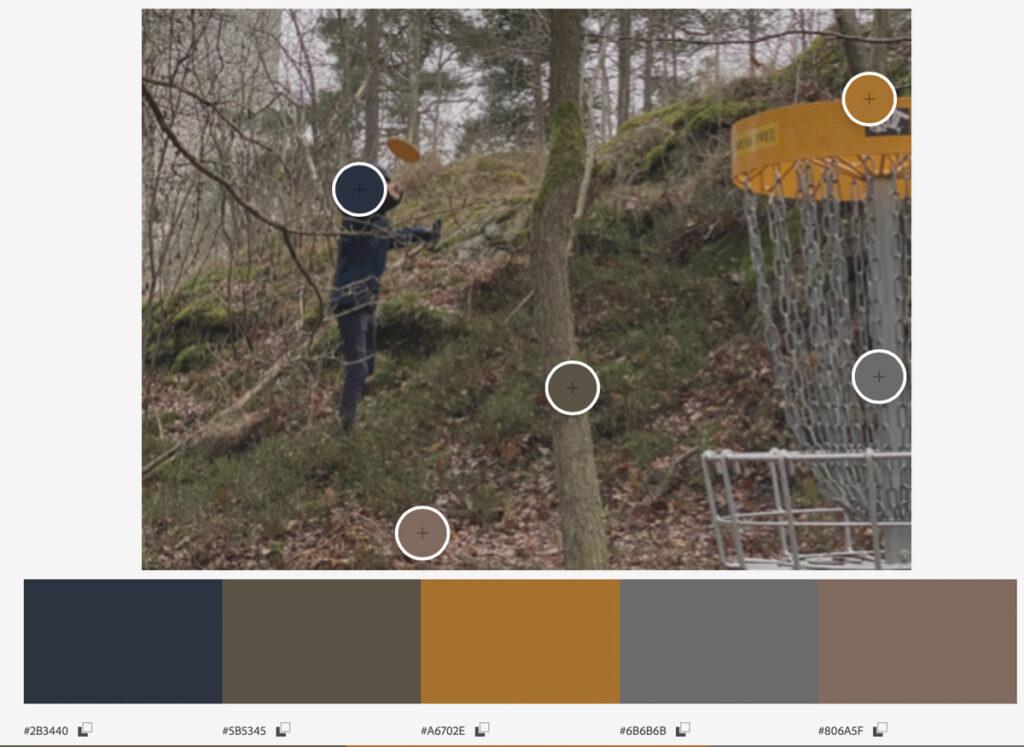 Gråskala - Även en trist, mulen dag finns det färger att inspireras av. Foto: Fredrik Strandberg
